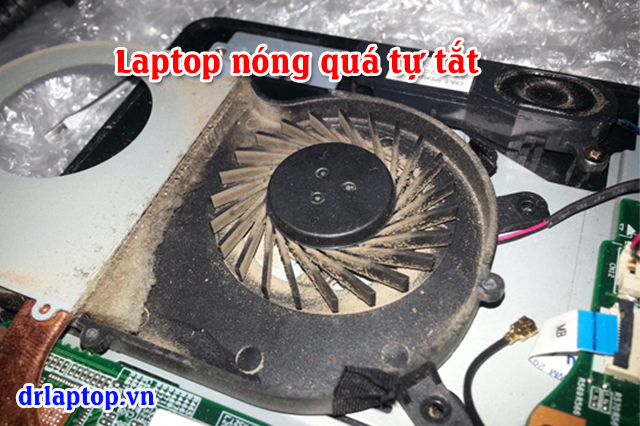Laptop Sony chạy nóng tắt treo máy quạt không quay  - 2
