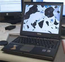 Thay Màn Hình Laptop Asus Lấy Liền  Original  - 2