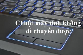 Chuột laptop Dell không thể di chuyển được, không click được